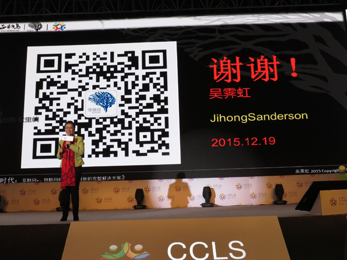 doing business in china s anderson jihong