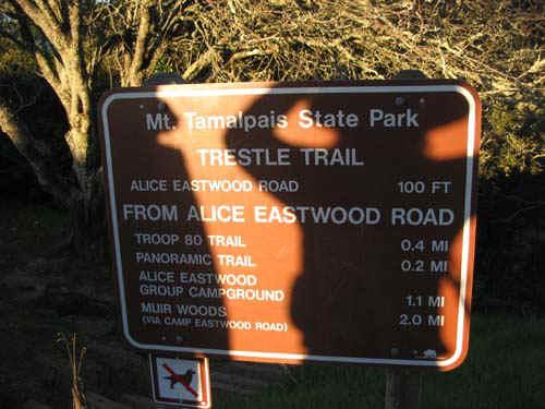 Trailhead To Muir Woods