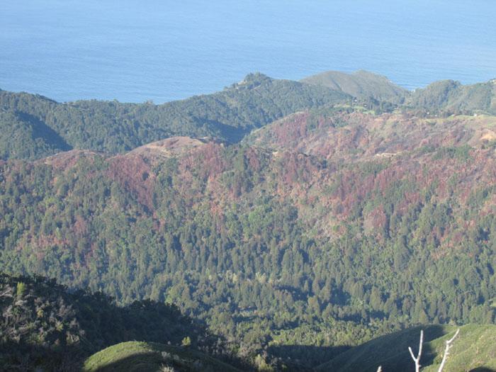 Mount manuel hike big sur