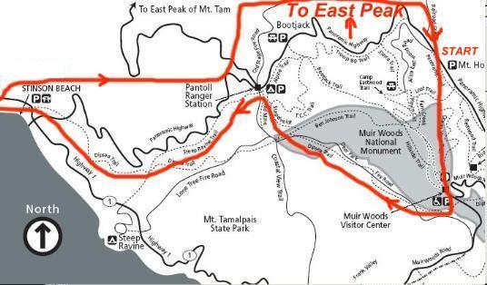 Muir Woods To Stinson Beach Mt Tam